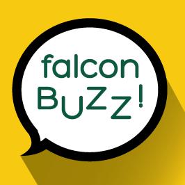 Falcon_buzz
