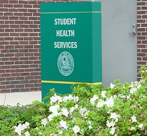 Health Services: More Than Just Flu Shots